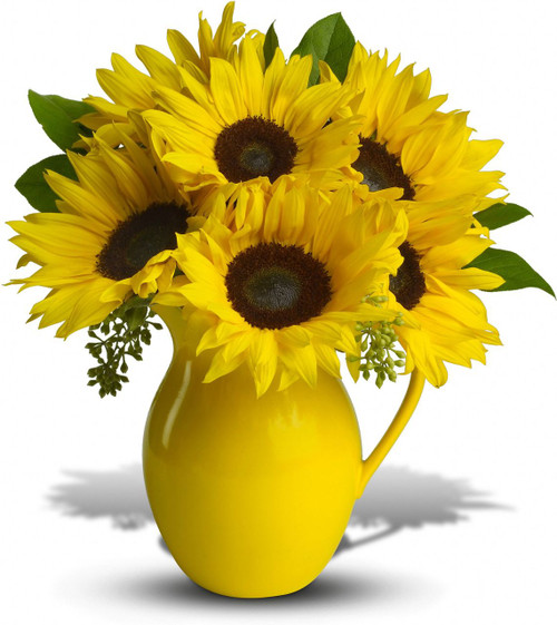 Pour on the fun by sending this dazzling bouquet of summer's brightest blooms! Great if you're invited to a pool party, BBQ or just want to brighten up someone's day.  Pitcher not available in all areas, a glass vase may be used.