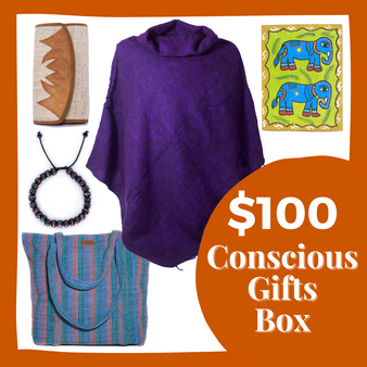 $100 Conscious Gifts Box