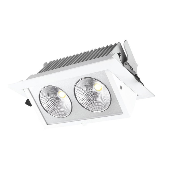 Commercial Adjustable Twin Recessed Downlight IP40