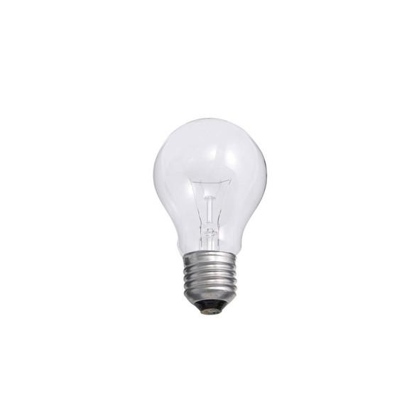 22533 40 Watt ES E27 GLS/SR Rough Service Light Bulb
