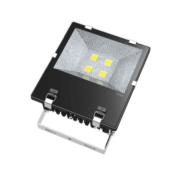 High Output LED Outdoor Floodlight for Landscape Lighting