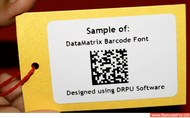 Printing Data Matrix Codes on the Epson LX-PX400