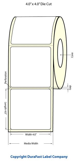 Epson TM-C3500 4x4 High Gloss Label Roll | Epson Media | 811021