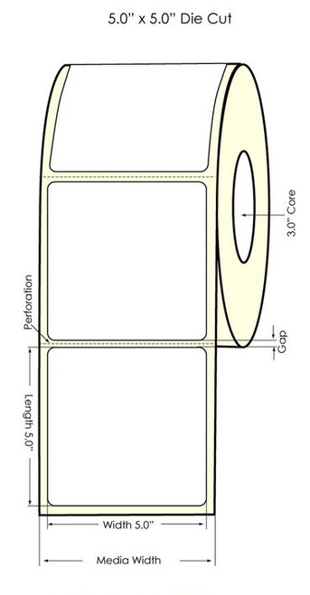 "Primera LX900 5"" x 5"" High Gloss Labels"