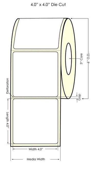 """LX900 4"""" x 4"""" Glossy BOPP Labels 600/Roll"""