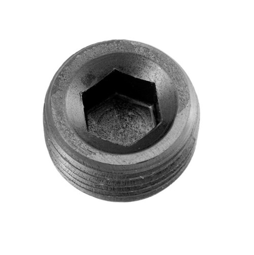 "Redhorse -02 (1/8"") NPT hex head pipe plug - black - 2/pkg"