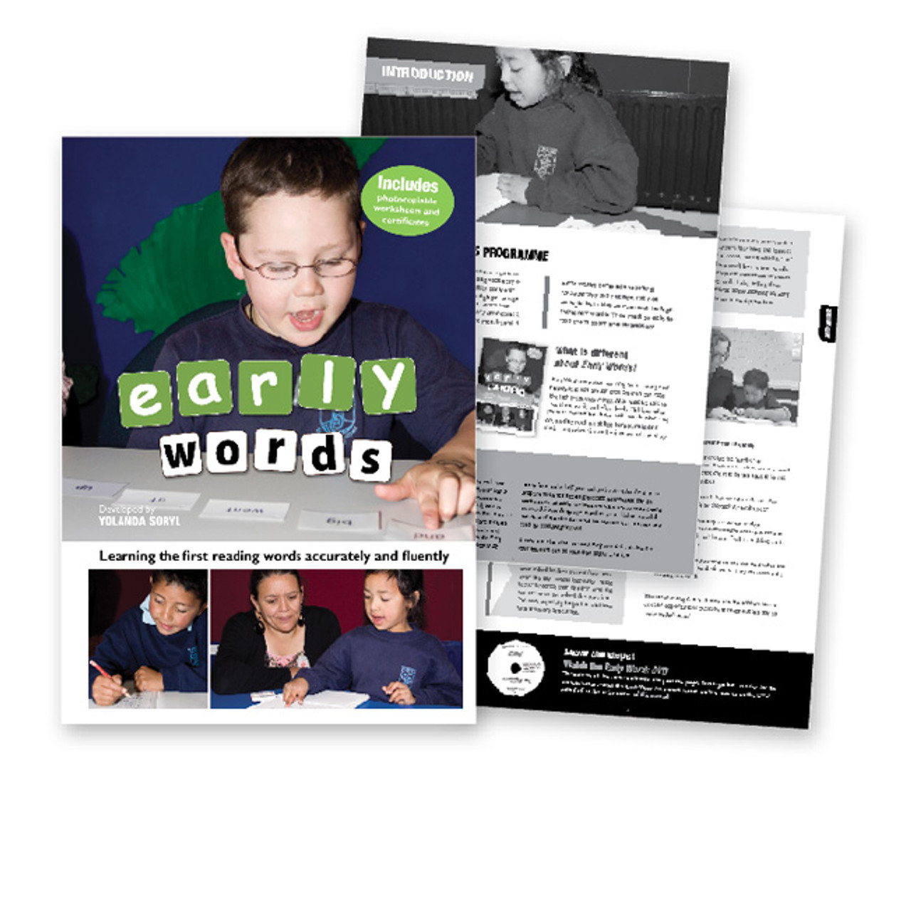 Early Words - Learning the first reading words accurately and fluently
