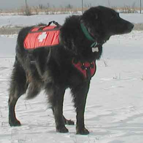 Cascade Rescue Dog Patrol Pack