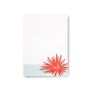 """Tropical Shells"" Notepad – Ha'uke'uke 'Ula'Ula"