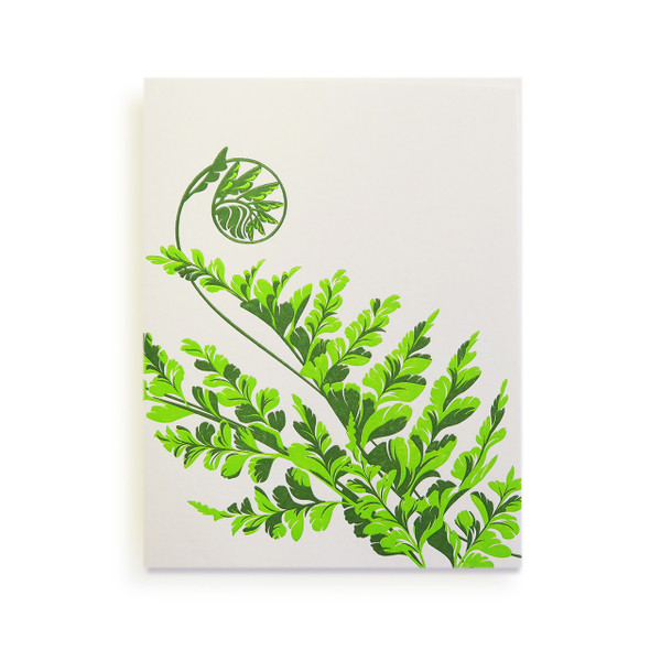 """Tropical Leaves"" Letterpress Notecard Series"