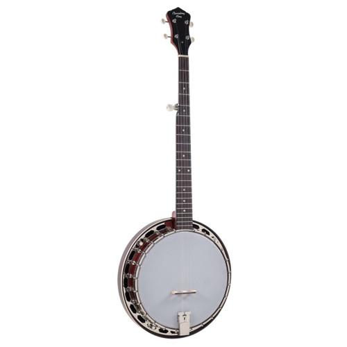 Recording King RKH-05 Dirty 30's Resonator Banjo