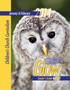 PDF Glow Jr. Leader's Guide: A Children's Church Curriculum Jan-Feb 2014