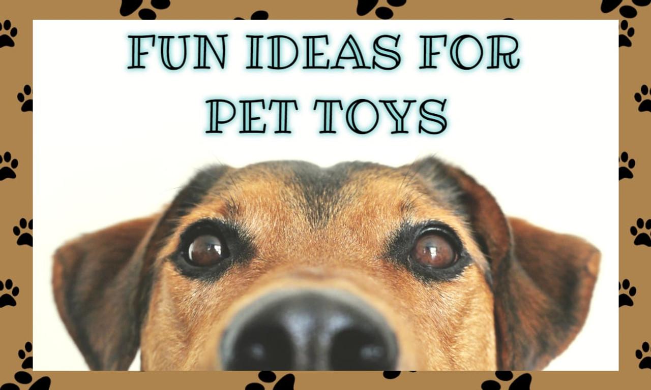 Fun Ideas for Pet Toys