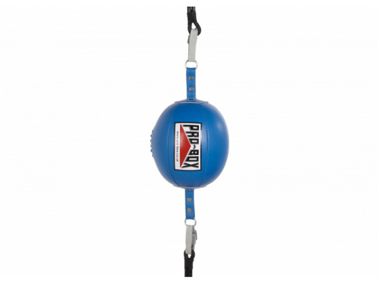 Pro Box Blue Floor To Ceiling Speed Ball