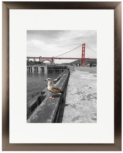 Frametory, 16x20 Satin Brushed Aluminum Photo Frame with Ivory Color Mat for 8x10 Picture & Real Glass (Dark Brown)