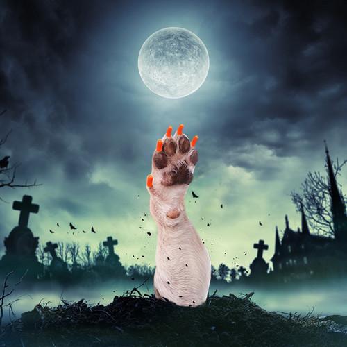 40pk DOG Halloween Combo Set Special