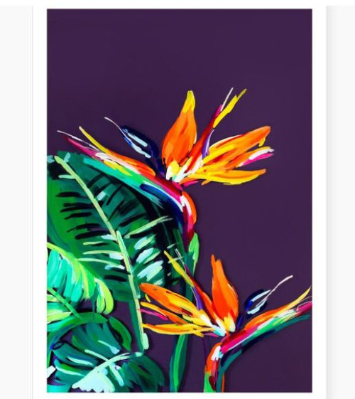 Gorgeous bright A3 birds of paradise print by Auckland artist Jen Sievers