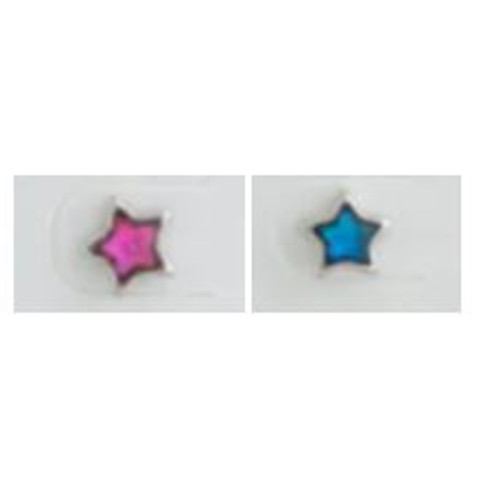 Earrings Paua Stars