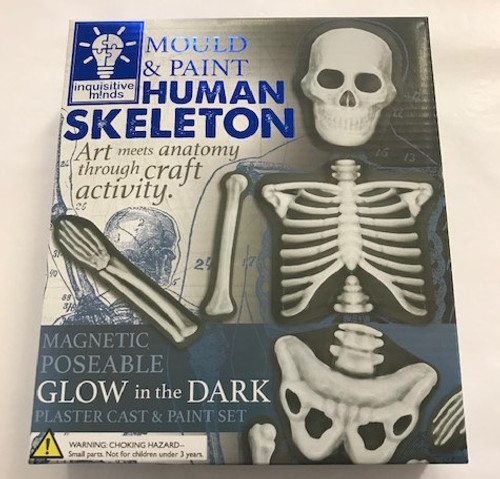 Mould & Paint Human Skeleton Keep busy minds occupied with this fantastic make & decorate set. Includes a 2 skeleton moulding trays, plaster, glow paint, grey paint, magnets, paintbrush and instructions to make a skeleton.  Fun and educational.  4+ years.