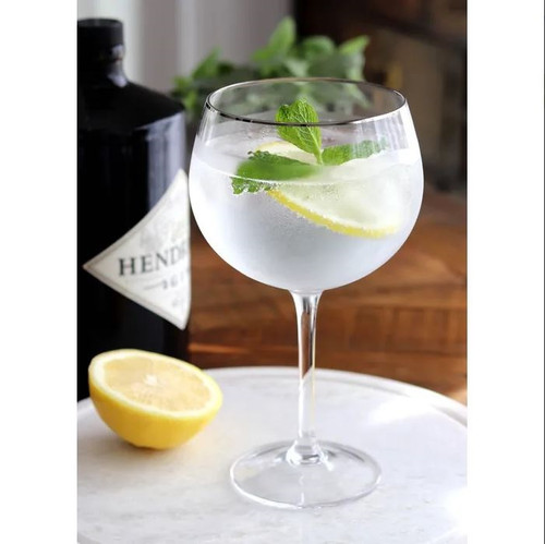 Gin Glass with Silver Rim