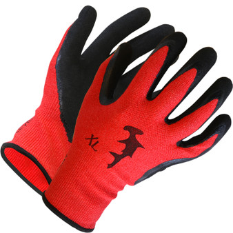 Dentex Gloves - Nitrile