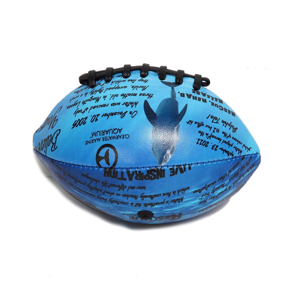 Winter Dolphin Facts Mini Football