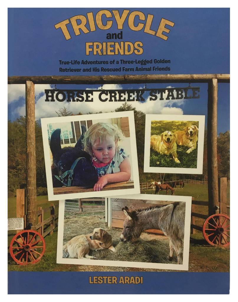 Tricycle & Friends Book - Paperback