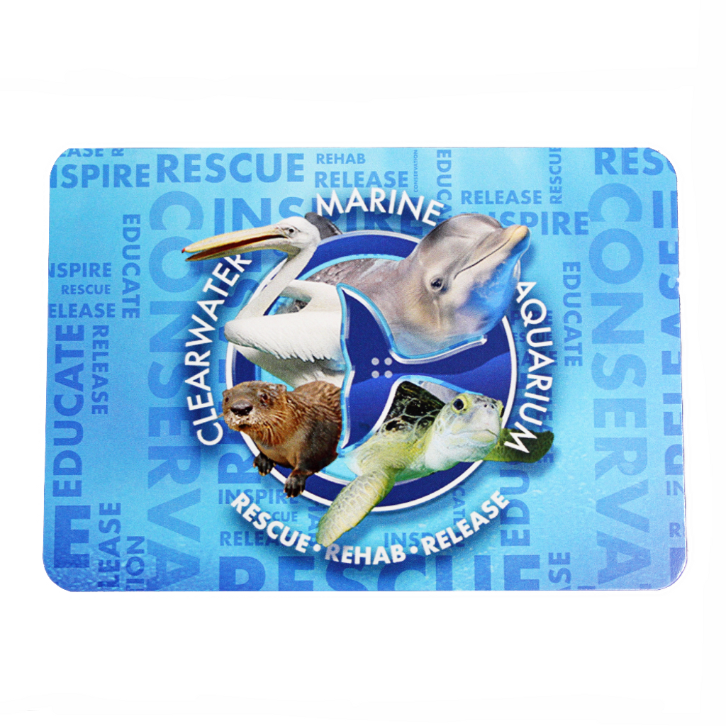 Clearwater Marine Aquarium Residents Rescue, Rehab & Release Postcard