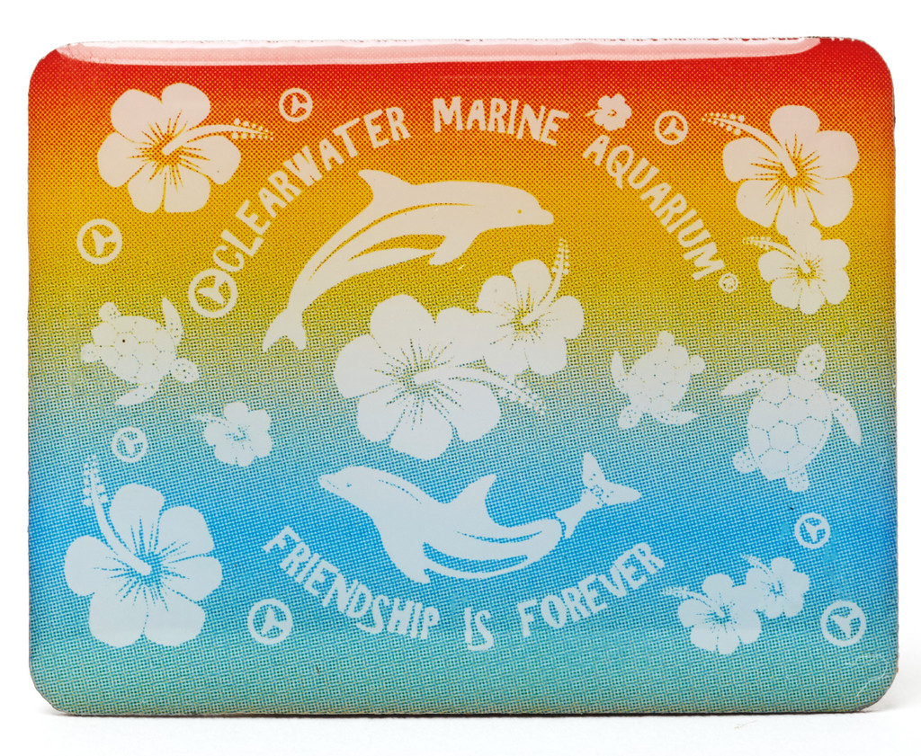 Clearwater Marine Aquarium Rainbow Hibiscus Enamel Pin