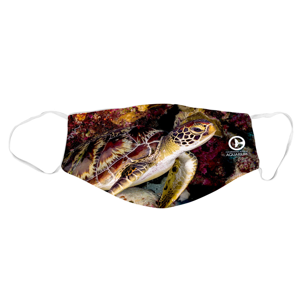 Clearwater Marine Aquarium Face Mask - Sea Turtle
