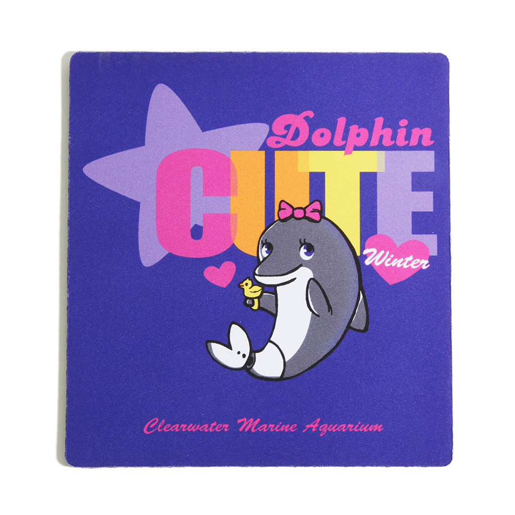 Winter Dolphin Cute Mouse Pad
