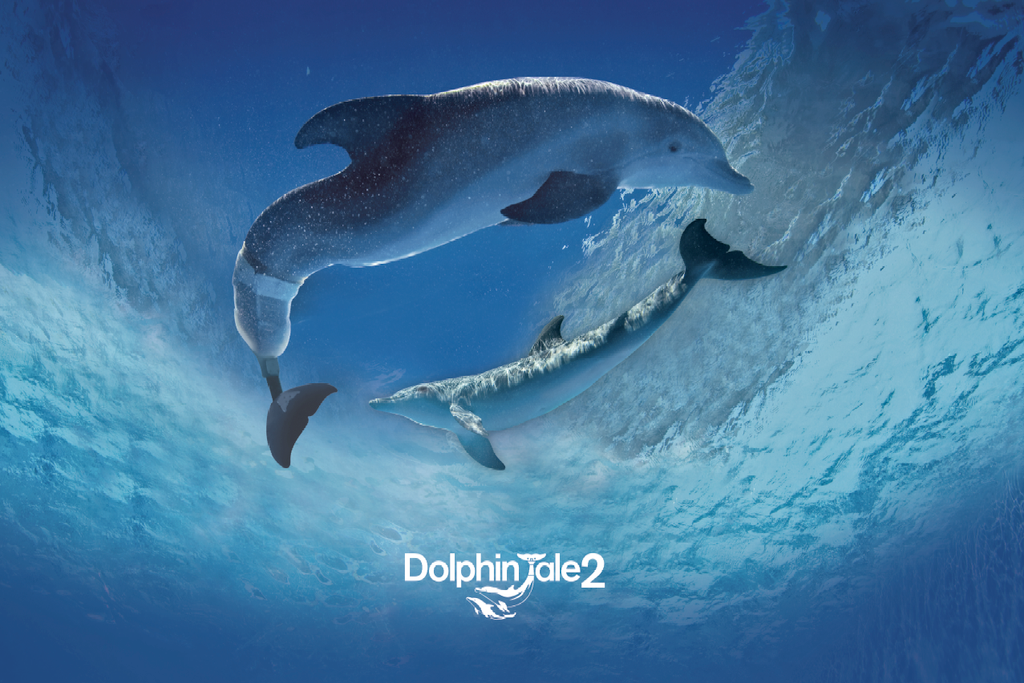Dolphin Tale 2 Winter & Hope Circle Poster