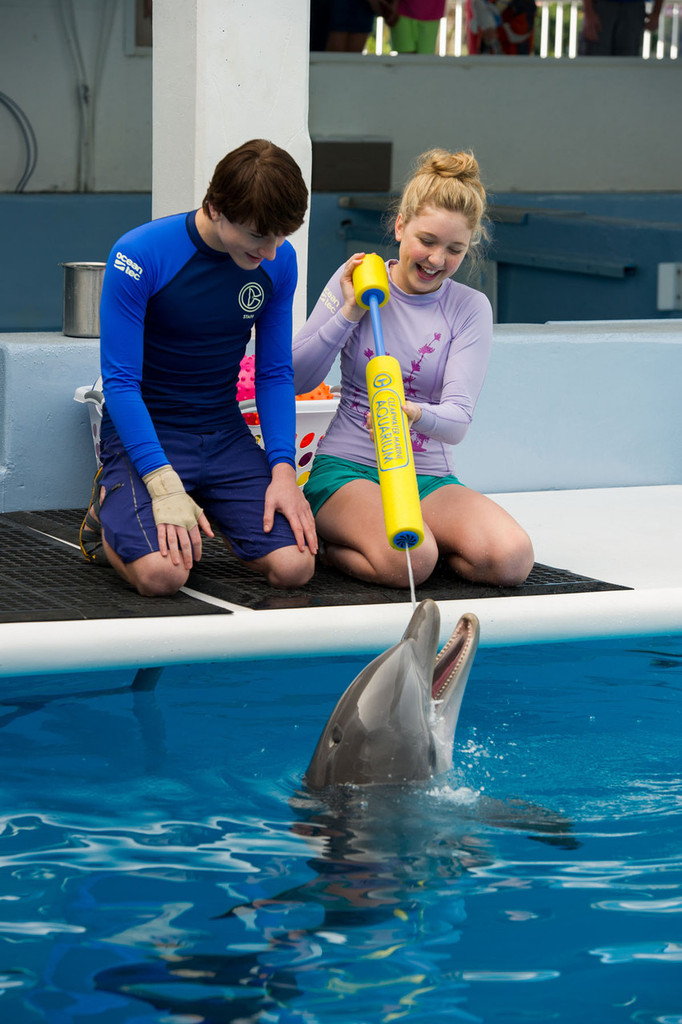 Dolphin Tale 2 Hope the Dolphin Squirt Toy