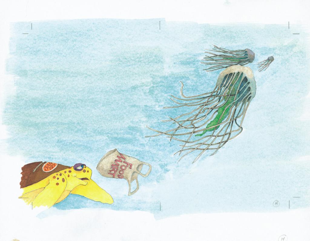 Captain Tortuga & the Treasure of Sand Key Book
