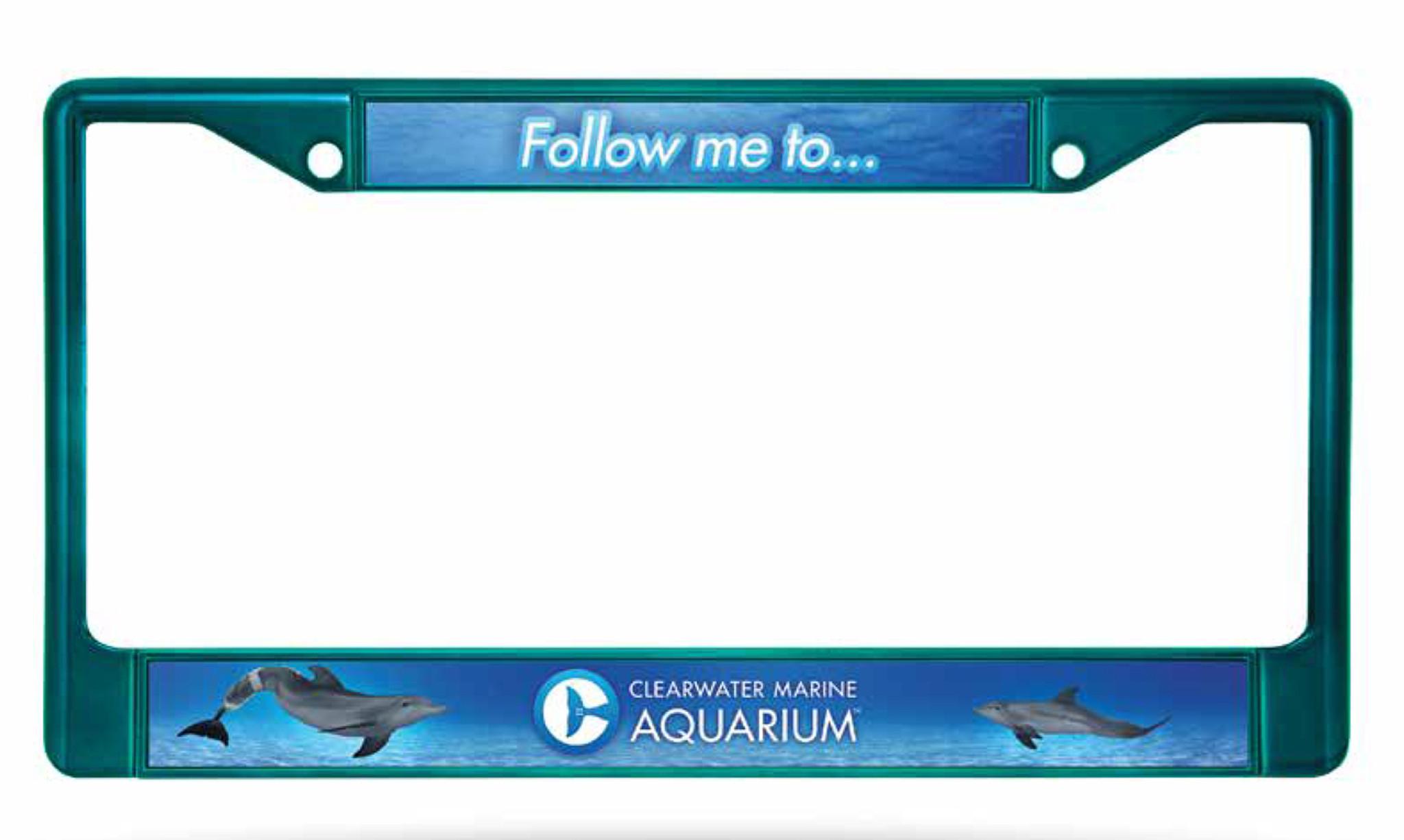 Clearwater Marine Aquarium Winter & Hope License Plate Frame | Gift Shop