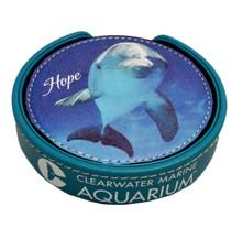 Winter & Hope 5-Piece Coaster Set