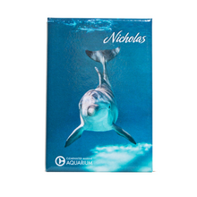 Nicholas the Dolphin Rectangle Magnet