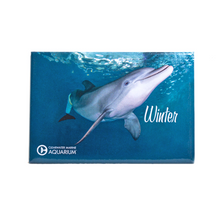 Winter the Dolphin Prosthetic Tail Rectangle Magnet
