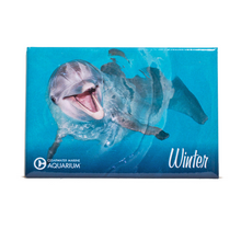 Winter the Dolphin Smiling Rectangle Magnet