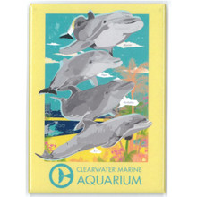 Clearwater Marine Aquarium Dolphin Family Rectangle Magnet