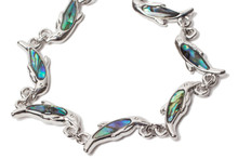 Winter the Dolphin Abalone Shell Bracelet - Without Prosthetic Tail