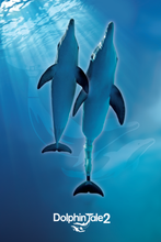 Dolphin Tale 2 Winter & Hope Friends Poster