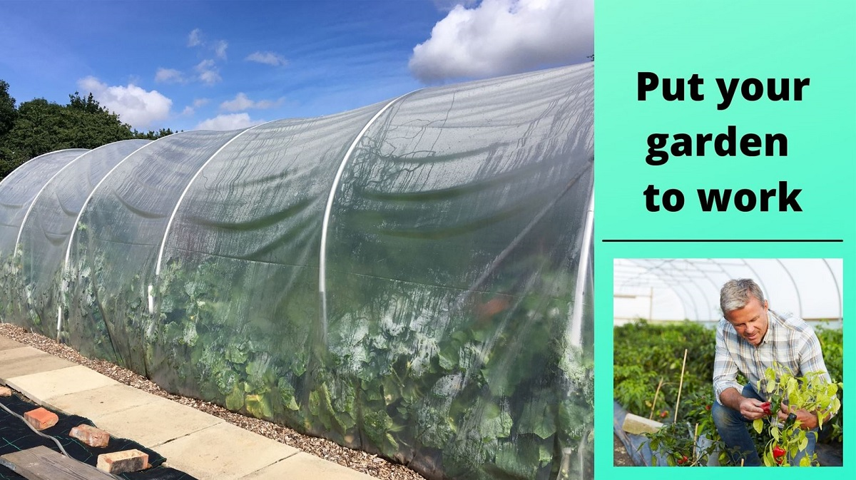 How do polytunnels work?