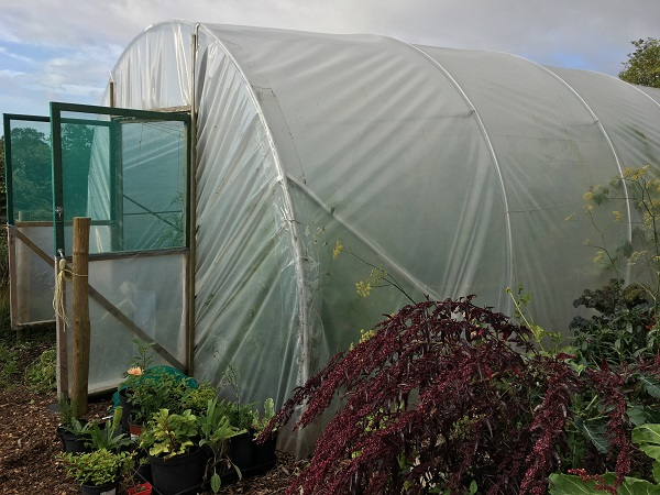 What are the advantages of polytunnels?