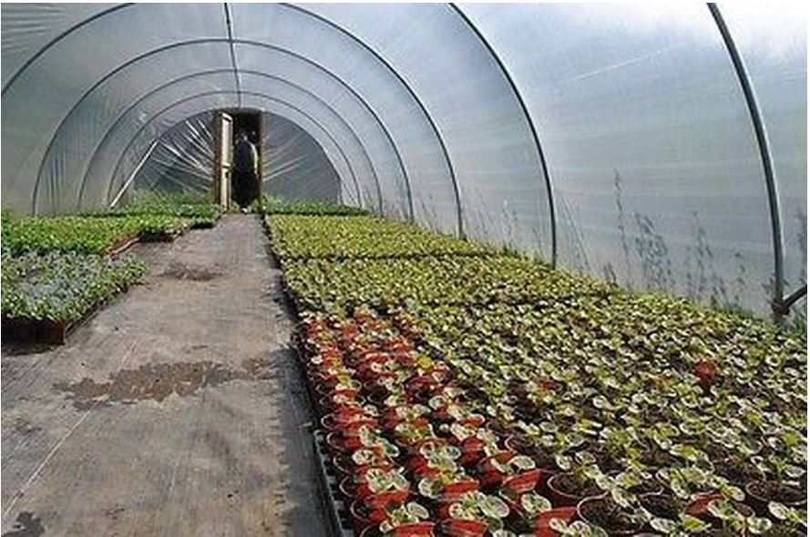 Commercial polytunnels direct from the manufacturer
