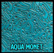 aquamonet-copy.jpg