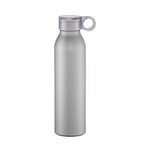 Easy Carry 650 ml Sports Bottle-  Silver