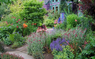 How to Grow A Garden For Less