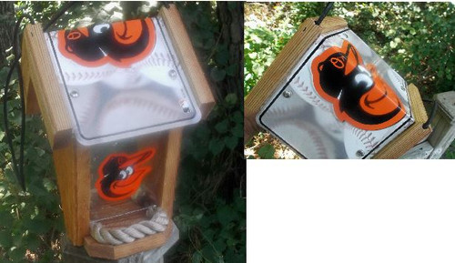 Baltimore Orioles License Plate Roof Bird Feeder