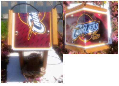 Cleveland Cavaliers License Plate Roof Bird Feeder